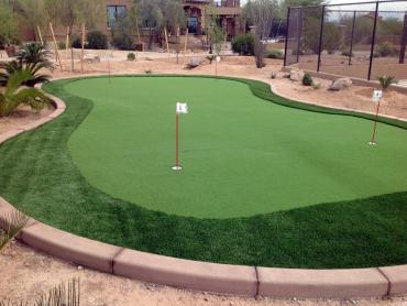 Artificial Grass Photos: Synthetic Turf Beyerville, Arizona Roof Top, Backyards