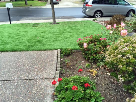 Artificial Grass Photos: Synthetic Turf Bylas, Arizona Rooftop, Landscaping Ideas For Front Yard
