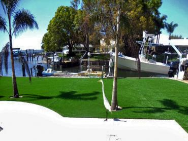 Artificial Grass Photos: Synthetic Turf Nelson, Arizona Landscaping, Backyard Landscape Ideas