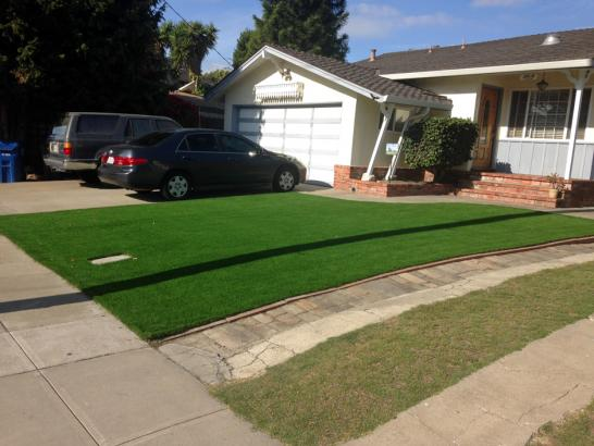 Artificial Grass Photos: Synthetic Turf Pinedale, Arizona Lawn And Garden, Front Yard Landscape Ideas