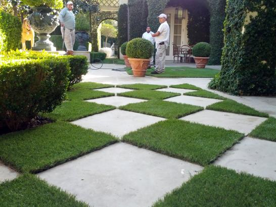 Artificial Grass Photos: Synthetic Turf Saint David, Arizona Gardeners, Pavers