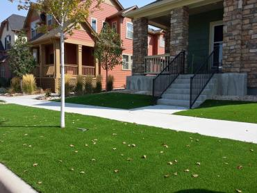 Artificial Grass Photos: Synthetic Turf Supplier Green Valley, Arizona Design Ideas, Small Front Yard Landscaping