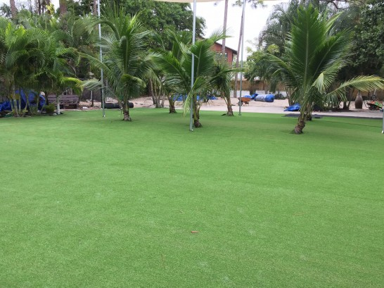 Artificial Grass Photos: Synthetic Turf Supplier Valencia West, Arizona Landscape Design, Commercial Landscape
