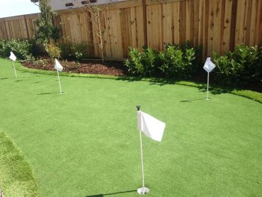 Artificial Grass Photos: Synthetic Turf Supplier Ventana, Arizona Landscape Rock, Backyard Designs