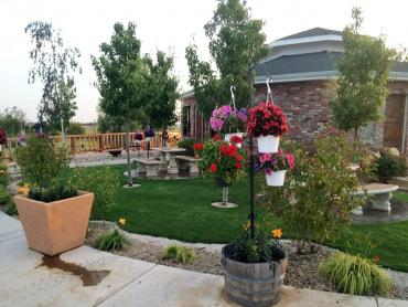 Artificial Grass Photos: Synthetic Turf Supplier Willcox, Arizona Design Ideas, Commercial Landscape
