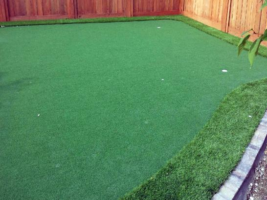 Artificial Grass Photos: Turf Grass Beyerville, Arizona Putting Green Flags, Backyard Makeover