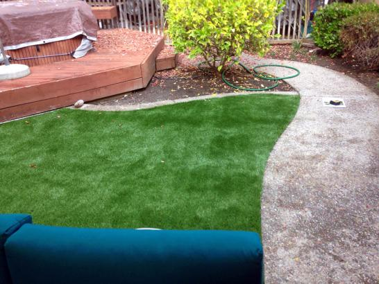 Artificial Grass Photos: Turf Grass Cowlic, Arizona Backyard Deck Ideas, Backyard Designs
