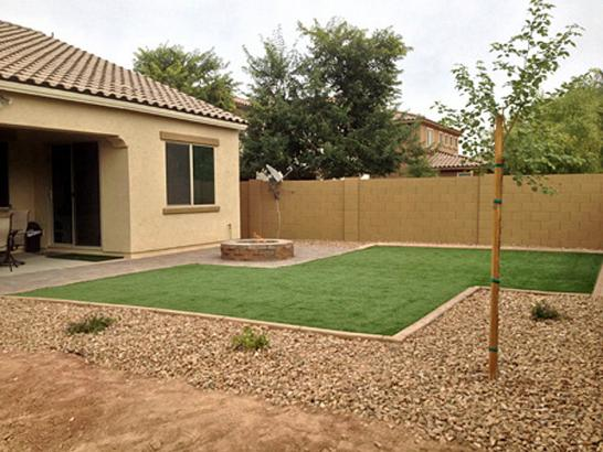 Artificial Grass Photos: Turf Grass Sevenmile, Arizona Backyard Playground, Backyard Garden Ideas