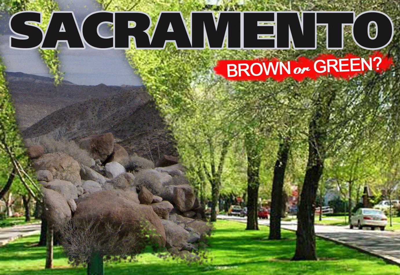 fakegrass Sacramento: Back to Desert, or Lifting a Ban on Artificial Grass?